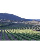 cava-ecologico-reserva-premium vino espumoso