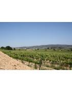 vino-penedes-crianza-ecologico